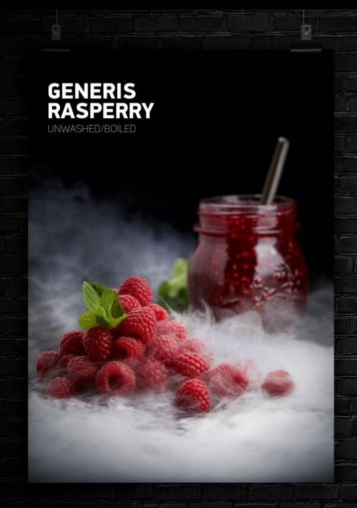 GENERIS RASPERRY 1