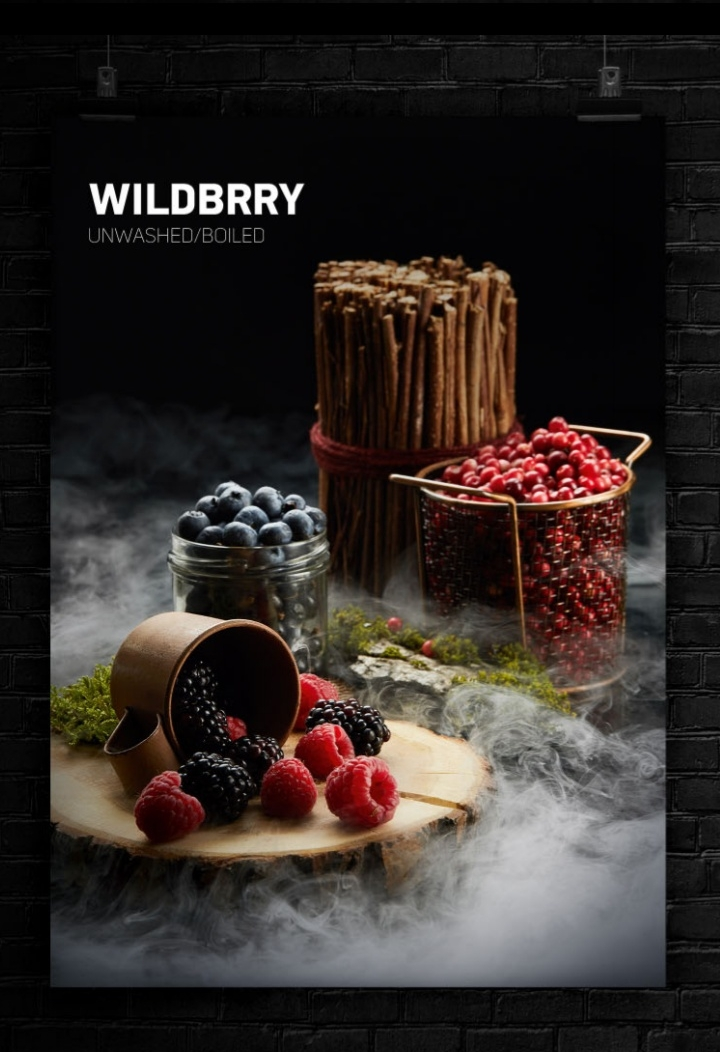 WILBRRY 1