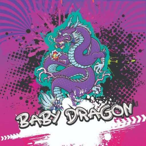 The Don Hookah Baby Dragon 200g